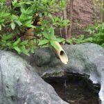 松鳴館の坪庭1